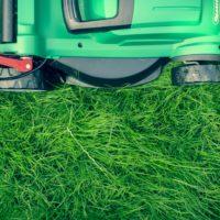 Gräsklippning och trädgårdsunderhåll